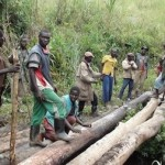 Local workers making a bridge