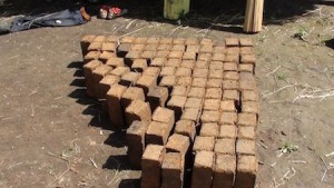 Gathering bricks at the construction site