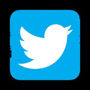 Twitter-icon-300x300